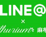 アンスリウムの公式LINEでチャットができるようになりました♪
